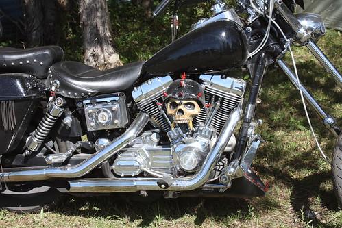 VacB259 by Mel ( RiderBlues )