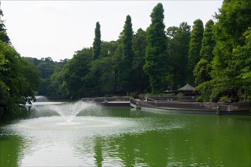 Fuente y lago del parque Inokashira