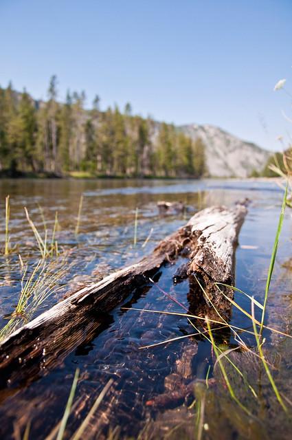 08.07.12_Yellowstone 034