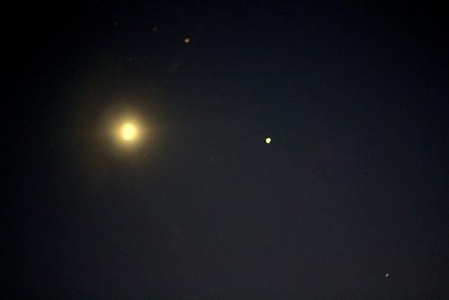IMG 4058 Dawn in Spring 2012