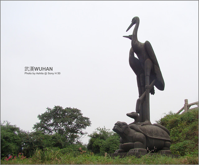 中國行2012_D224
