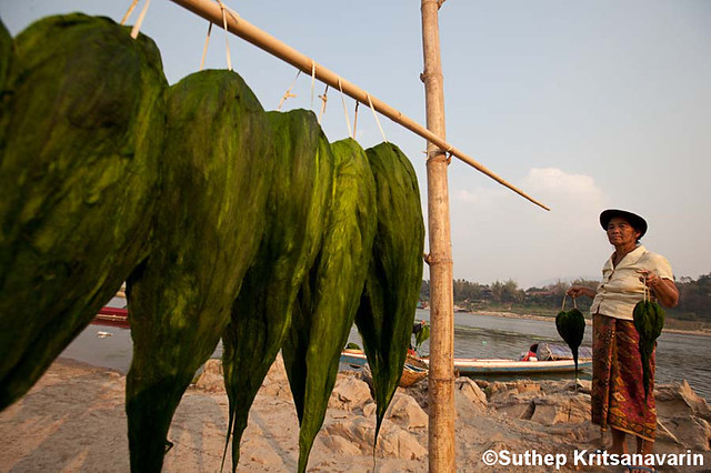 A Photo Exhibition by Suthep Kritsanavari