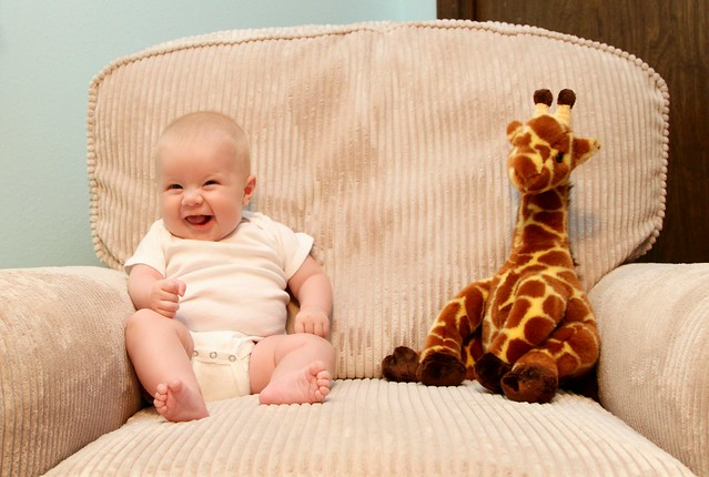 M vs Giraffe week 14