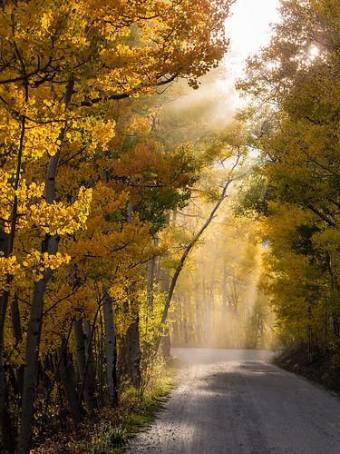 fall colorado unitedstates breckenridge boreaspass