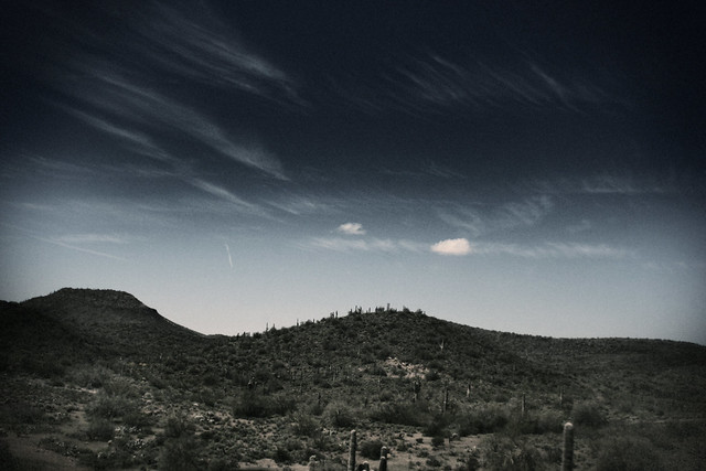 Cactus and Clouds, Phoenix, Arizona, 2008
