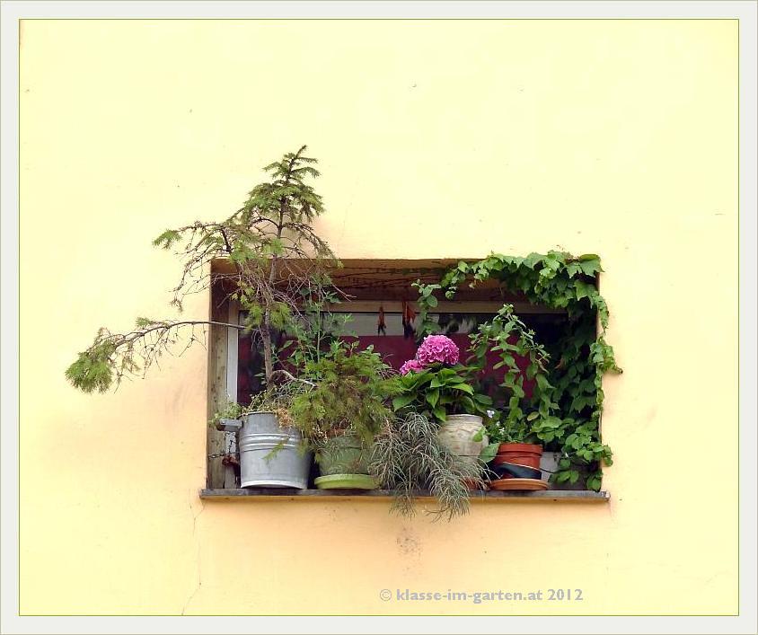 Fenstergarten 1030 Wien