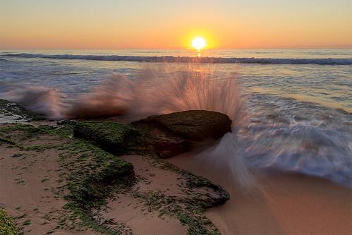 sea sky color colour reflection art beach nature water sunrise bay early warm natural pacific cove sydney australia shore nsw serene seashore goldenhour sunup daybreak goldenlight cffaa