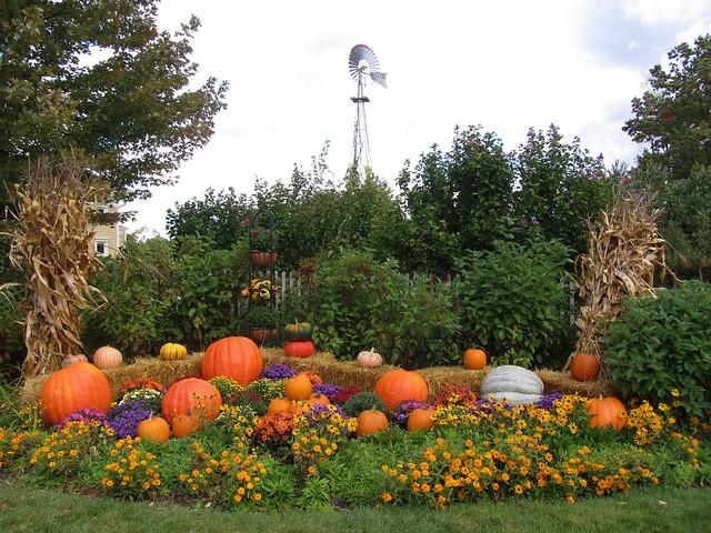 Awesome Autumn Decorating
