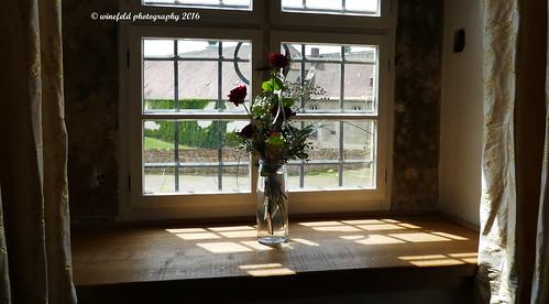 Das Fenster / The window