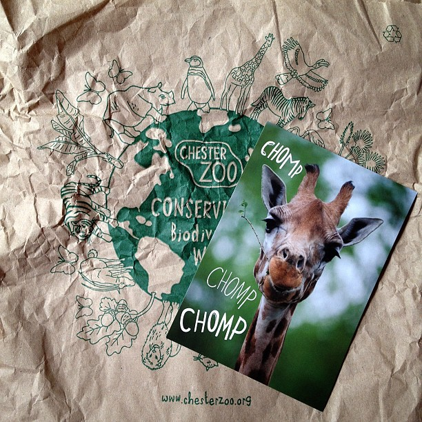 #giraffe #chomp #postcard #chester #zoo
