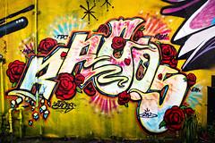 BACOS TDC HOK ABN EM  @ Graffalot | Houston Graffiti 2012