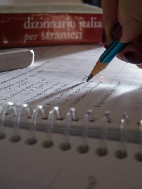 Facendo il compitino