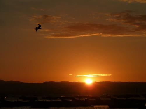sunset paracas