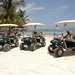 Boaz Golf Cart Rentals 1