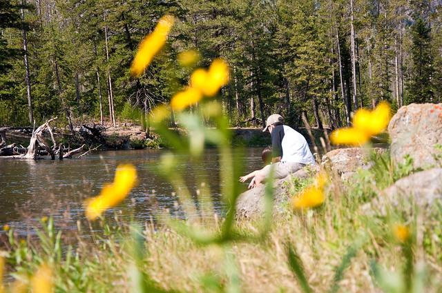 08.07.12_Yellowstone 012