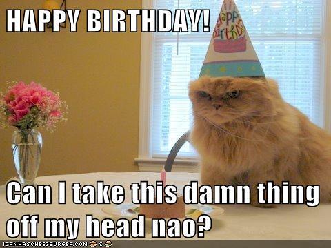 lol happy birthday kitteh