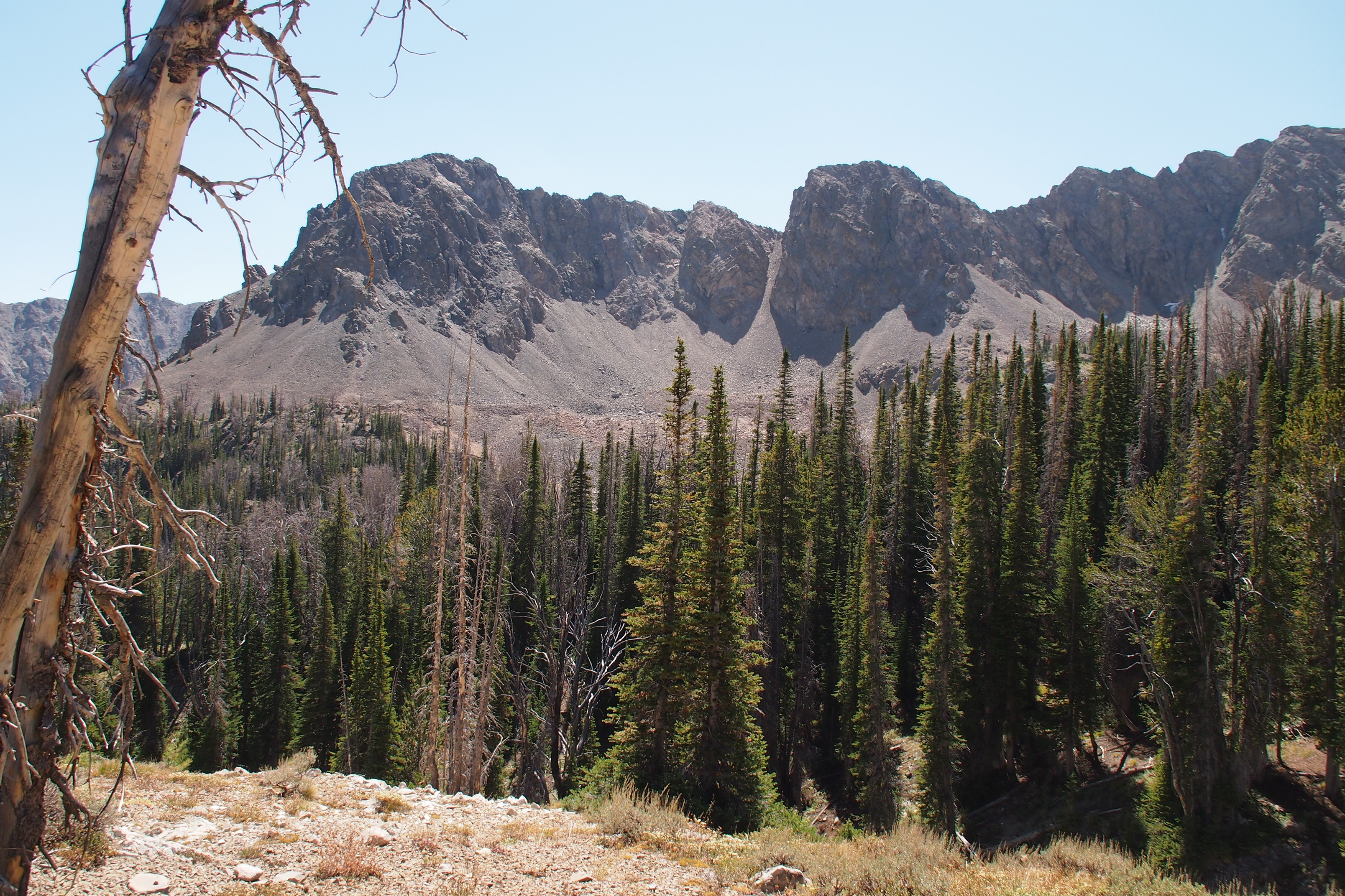 Wood Mountain Elevation : Elevation of id ketchum usa topographic map