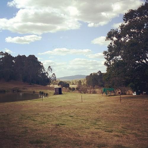 More farm.