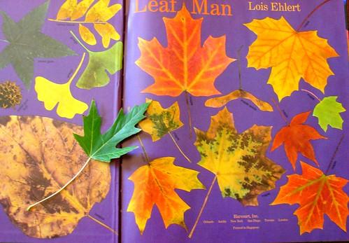 Leaf Man 9
