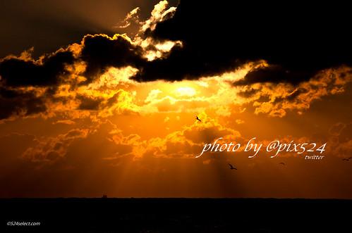 目覚めの刻 - 無料写真検索fotoq