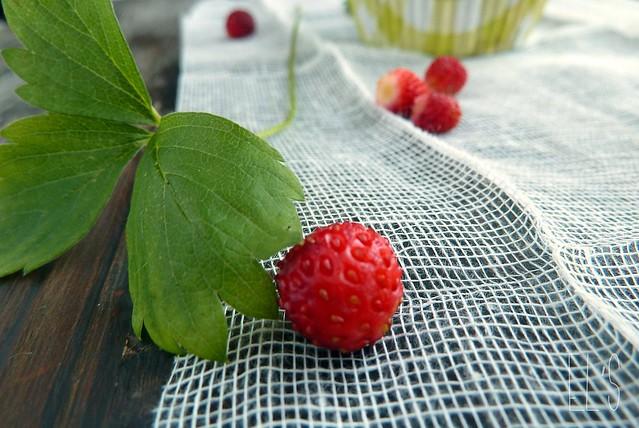 Cupcakes rhubarbe et fraises