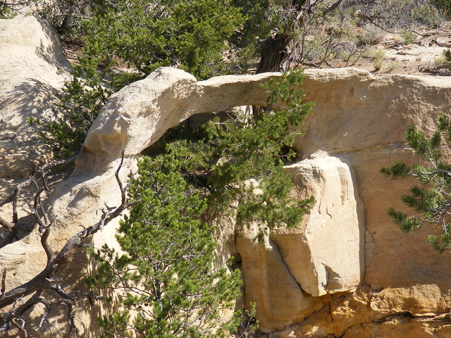 New Mexico Natural Arch NM-327