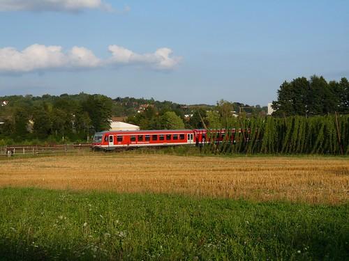 Der Wolnzach-Express dieselt an Hopfen-Feldern vorbei durch die Hallertau.