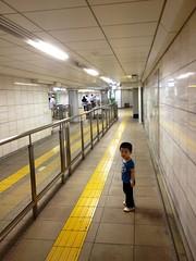 朝散歩 とらちゃん (2012/8/14)