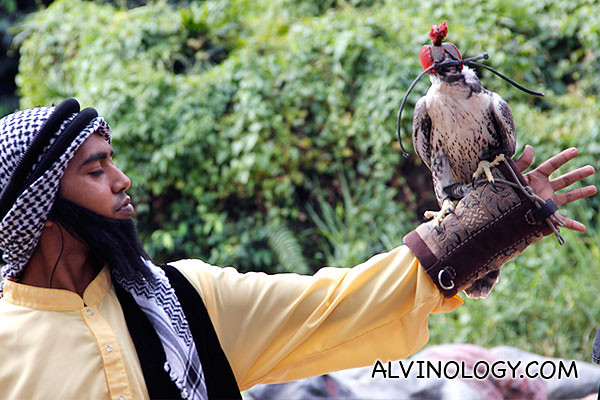 A guy in costume enacting the art of falconry