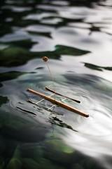 Sicillian pooh stick