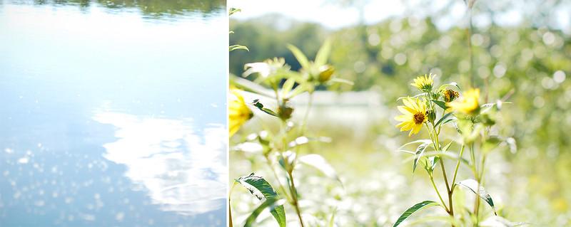 photo walk 8_17_12-33