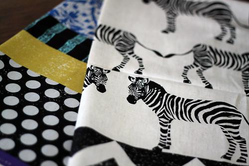 Echino Zebra