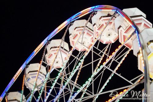 Wilson County Fair 2012