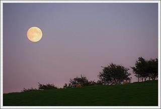 Dusk Moonrise