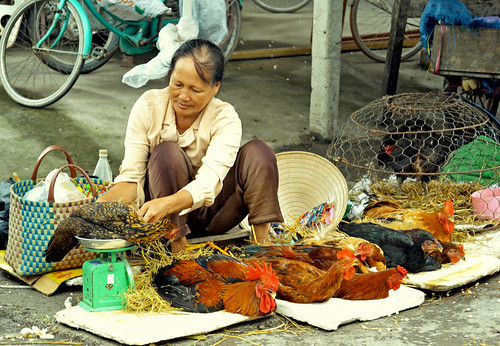 Live hicken vendor in Vietnam