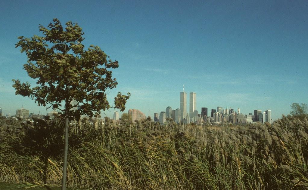 WTC 131