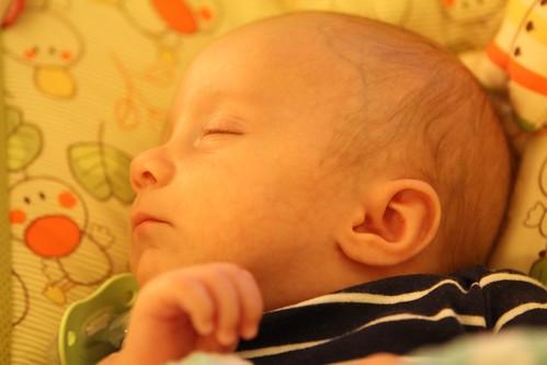 Sleeping Martin