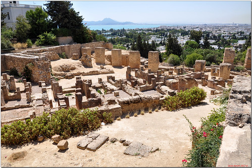 The Ruins of Carthage (29)
