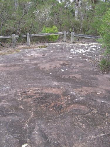 120502-1442.32__Browns Mountain, Kangaroo Valley