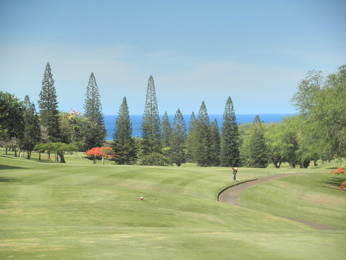 Makaha Valley Country Club 015