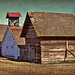 The Great Barns at Piney Grove:  Coakley, Edgecombe County, North Carolina