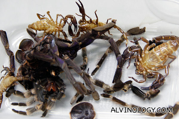 Dried scorpions and tarantulas