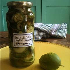Pickled #homemade
