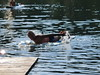 nuotatina al lago