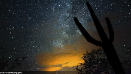 Perseid Milky Way