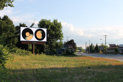 Albany Billboard Art Project 2012 - Julia Cocuzza (22)