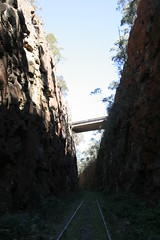 120901-1007.47__Cave Creek Bushwalk