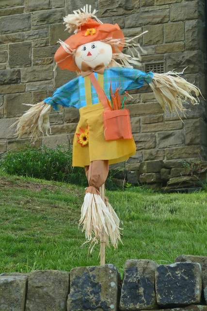 Photo for Scarecrow home decorations co ltd