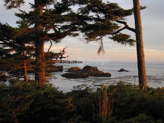 Black Rock Oceanfront Resort-27