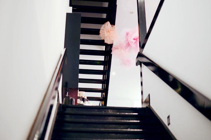 stairs miss fox